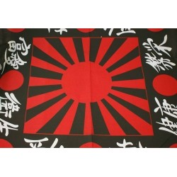 Japanese character and flag...