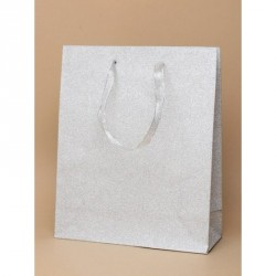 Gift bag - Silver glitter gift bag with ribbon handle