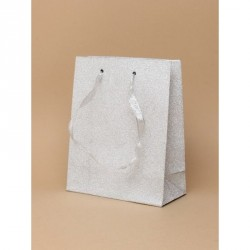 Gift Bag - Silver glitter...