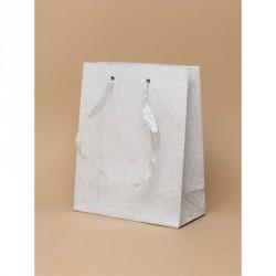 Gift Bag - Silver glitter gift bag with ribbon handle gift bag