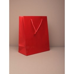 size 23x19x9cm. medium glossy finish red giftbag with cord handle. paper grade 158gsm.