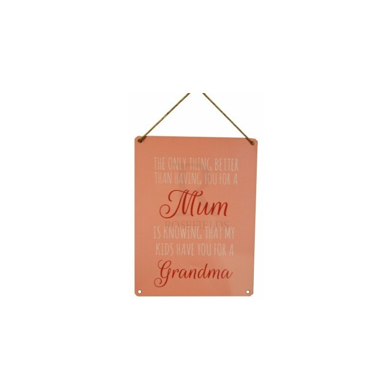 Love Mum Sign - Knowing that my kids have you for a grandma vintage metal sign