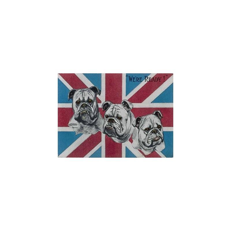 firmar 15x20cm - estamos listos! - Muestra del metal británico del perro del toro