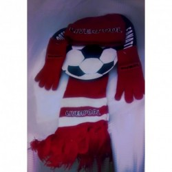 Hat, Gloves and Scarf set Little Boy Liverpool/Manchester Football team lover Winter warmer