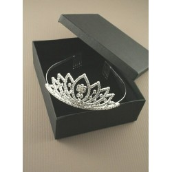 14cm Silv Centre Crystal Flower Tiara With combs. This...