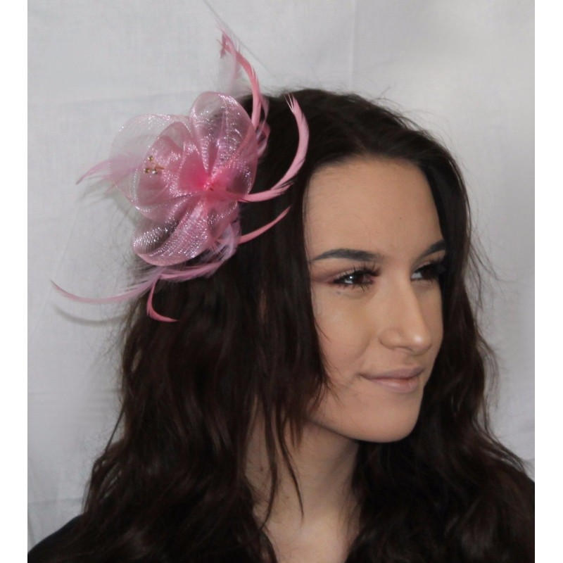 Pastel coloured net and feather crystal centre fascinator on clear comb. In Pink/lilac/aqua and green.