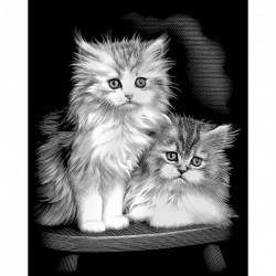 Reeves - Silver Scraperfoil Fluffy Kittens